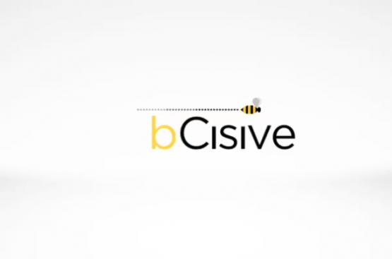 bcisve_t